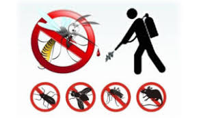 Continuano gli interventi per il contrasto alla proliferazione di insetti e roditori