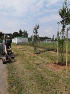 Più alberi a Cesate