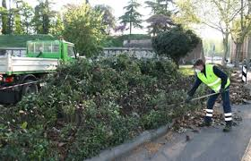Verde pubblico a Cesate – proseguono gli interventi per la cura e la manutenzione del verde