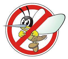 Zanzare – ricordiamo gli interventi di disinfestazione